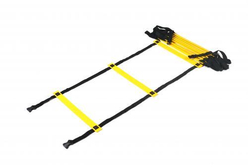 PB SAQ Ladder